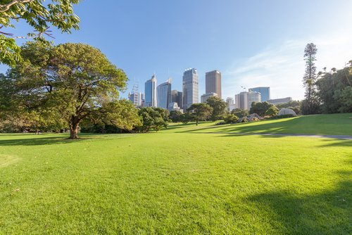 Why do we Want Green Spaces in our Cities?